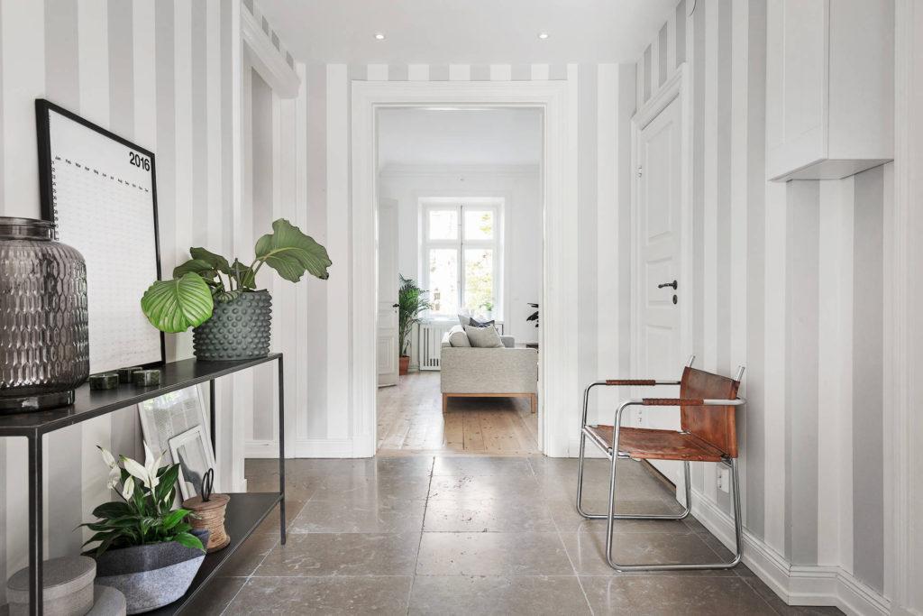 Комнатные растение в коридор.