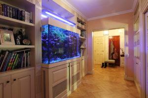аквариум в интерьере коридора