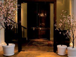 декор в коридоре растениями