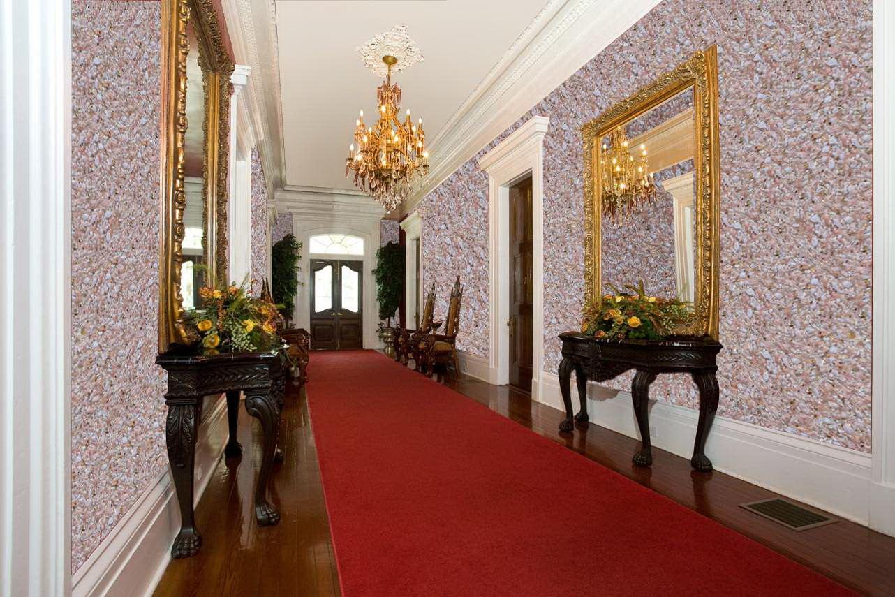 Жидкие обои в длинном коридоре с красным ковром