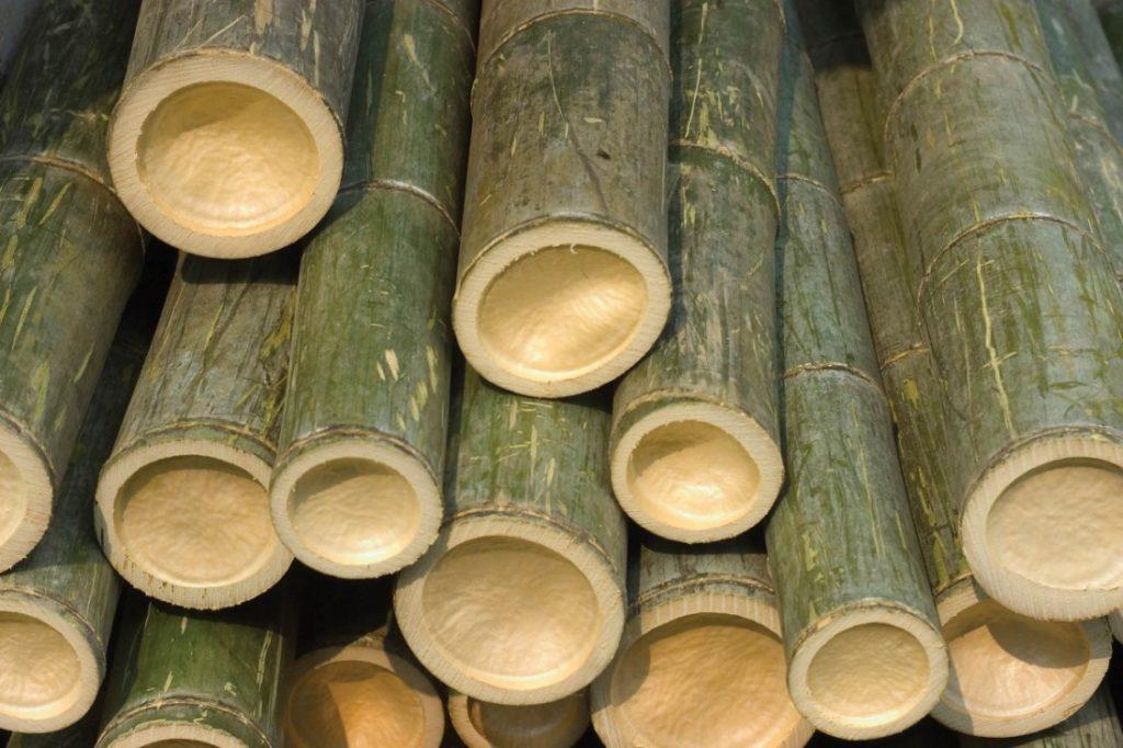 первый этап производства бамбука